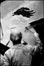 David Herskovitz 1981.72x550h